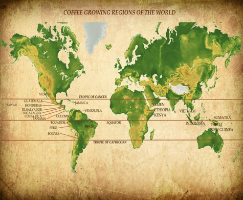 Tropic of cancer italy in 30 seconds the tropic of cancer latitude approximately 2327 n of the terrestrial equator is commonly held to be the incubator for the perfect cup of coffee gumiabroncs Gallery