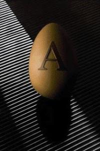 Armani Egg