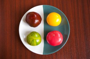 tomato colorati